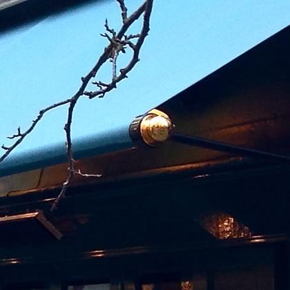 regency canopy detail image