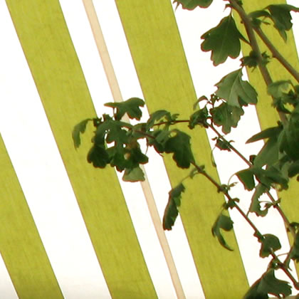 environment friendly awnings and blinds by Morco Blinds